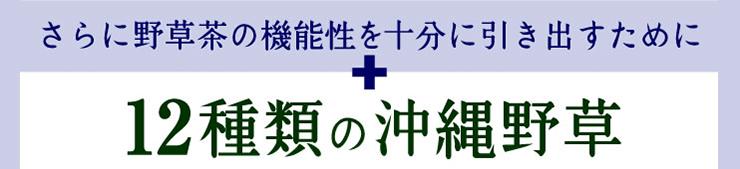 12種類の沖縄野草