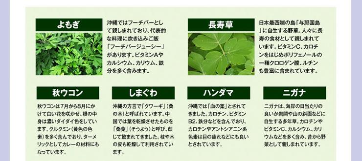 よもぎ,長寿草,秋ウコン,しまぐわ,ハンダマ,ニガテ